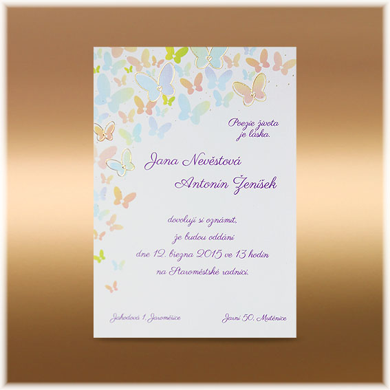 Funny butterfly wedding invitations